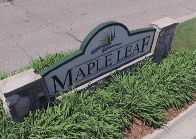 Maple-scaled-1