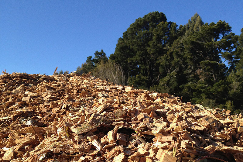 A Mountain of Woodchips...