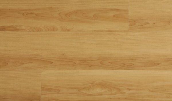 paradigm sandalwood