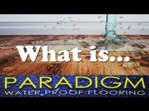 what is paradigm