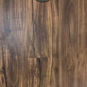 chfwpc-sie sierra brown