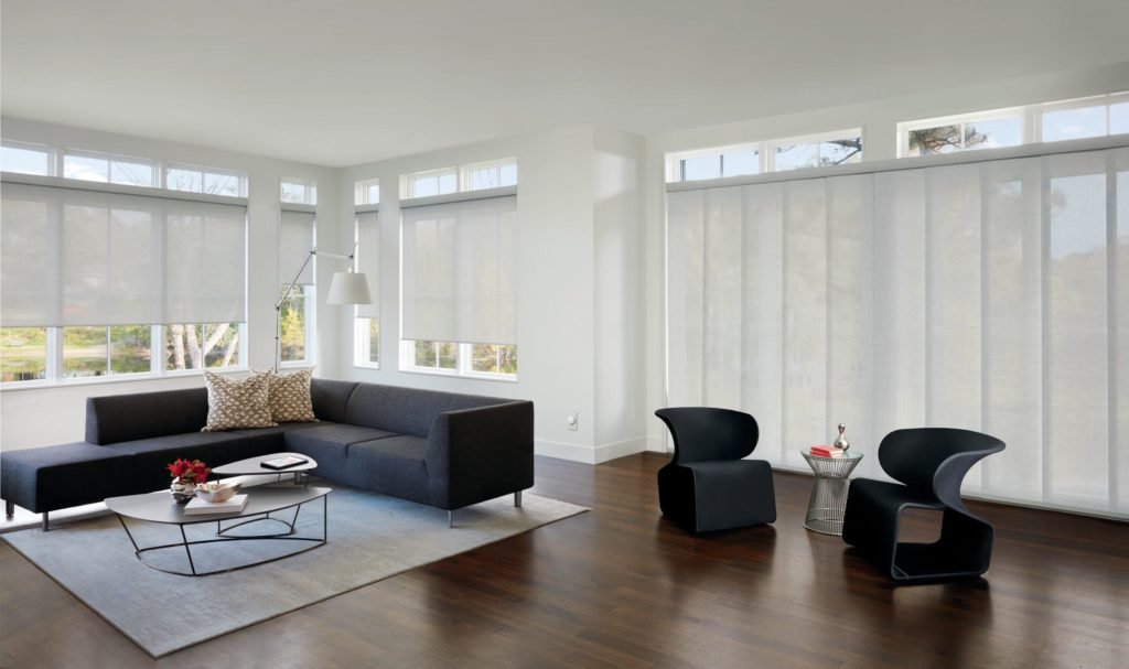 Hunter Douglas Roller shades and Skyline panel track