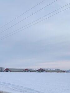 Steve Kluemper Snow Day