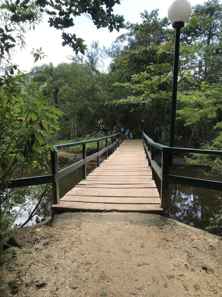 Inicio da trilha das 7 praias em Ubatuba