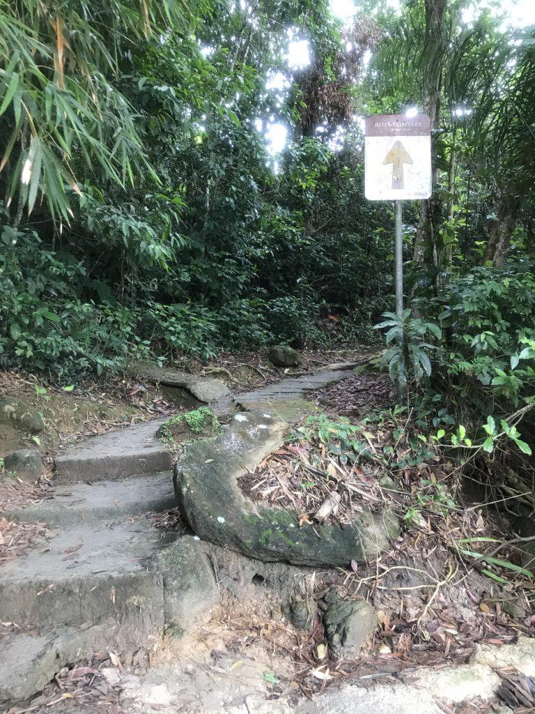 Início da trilha das 7 quedas caso cruze o rio pela praia da Lagoinha