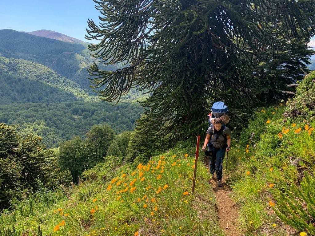 Primeiro dia Villarrica traverse