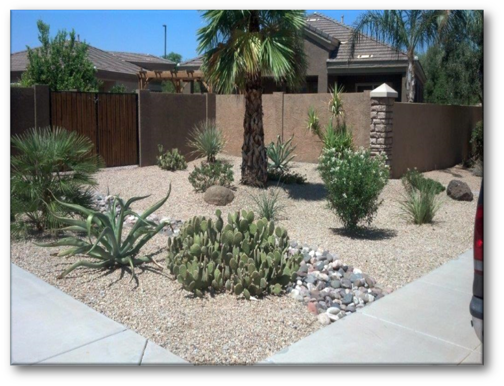 The Yard Experts, offers you the best clean up and tree care service in the southeast valley. As a full service landscaper, we understand that over the summer it's too hot to do the outdoor work. So call us!