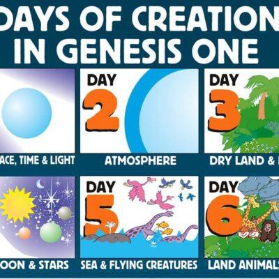 Genesis Leadership Strategies