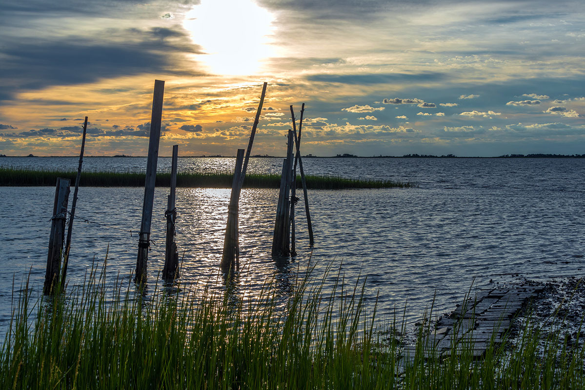 Scene from the shore of the Chesapeake Bay at sunset.