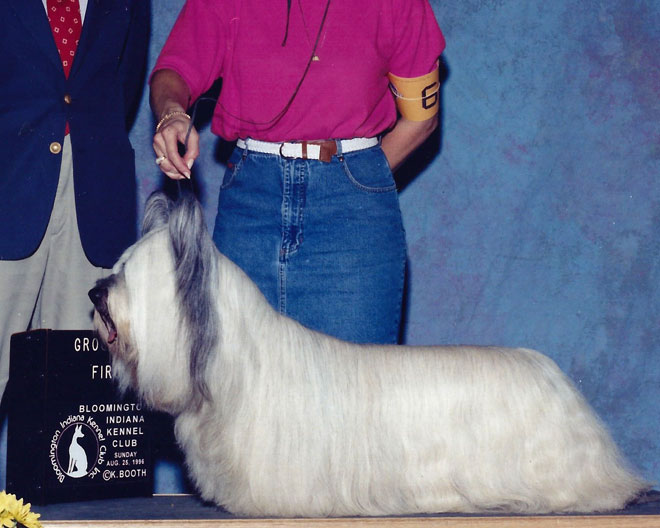 Ch. Brilliant Whispers Adventure Skye. Another Group One, this time at the Bloomington Indiana Kennel Club.