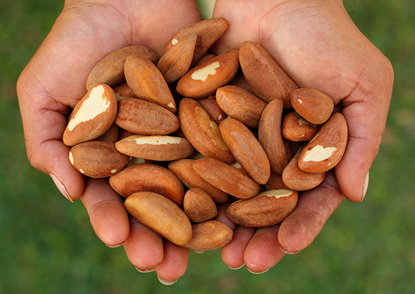 brazil-nuts-shelled