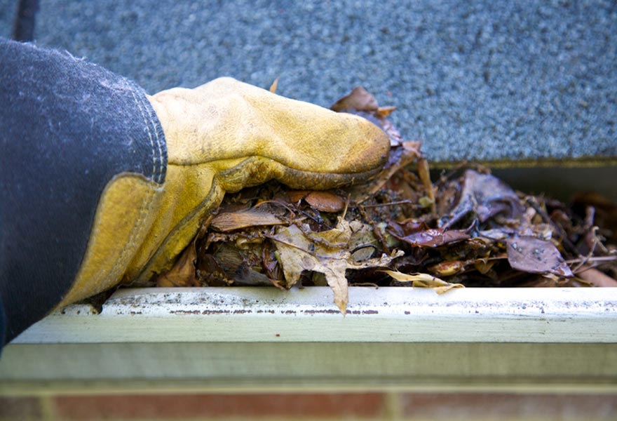 OKC area Gutter Cleaning Services