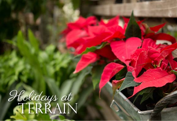 Holidays at Terrain. Photo by Hand-Painted Weddings.