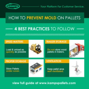 How to prevent mold on pallets guide