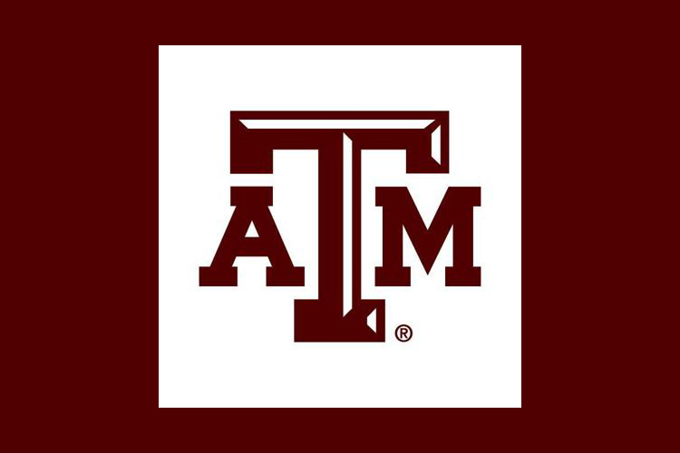 Forums let public help shape Texas A&M's next five-year plan