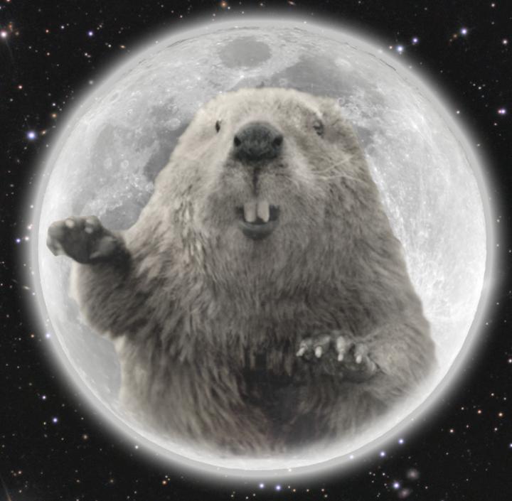 full-beaver-moon-cover