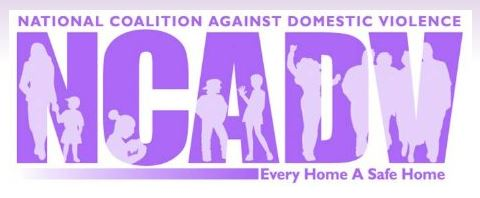 7/29/14 – 1st National Online Searchable DV Provider Database Set to Launch