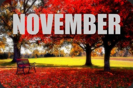 PAVE Calendar for a Cause Fundraiser – Month of November 2017