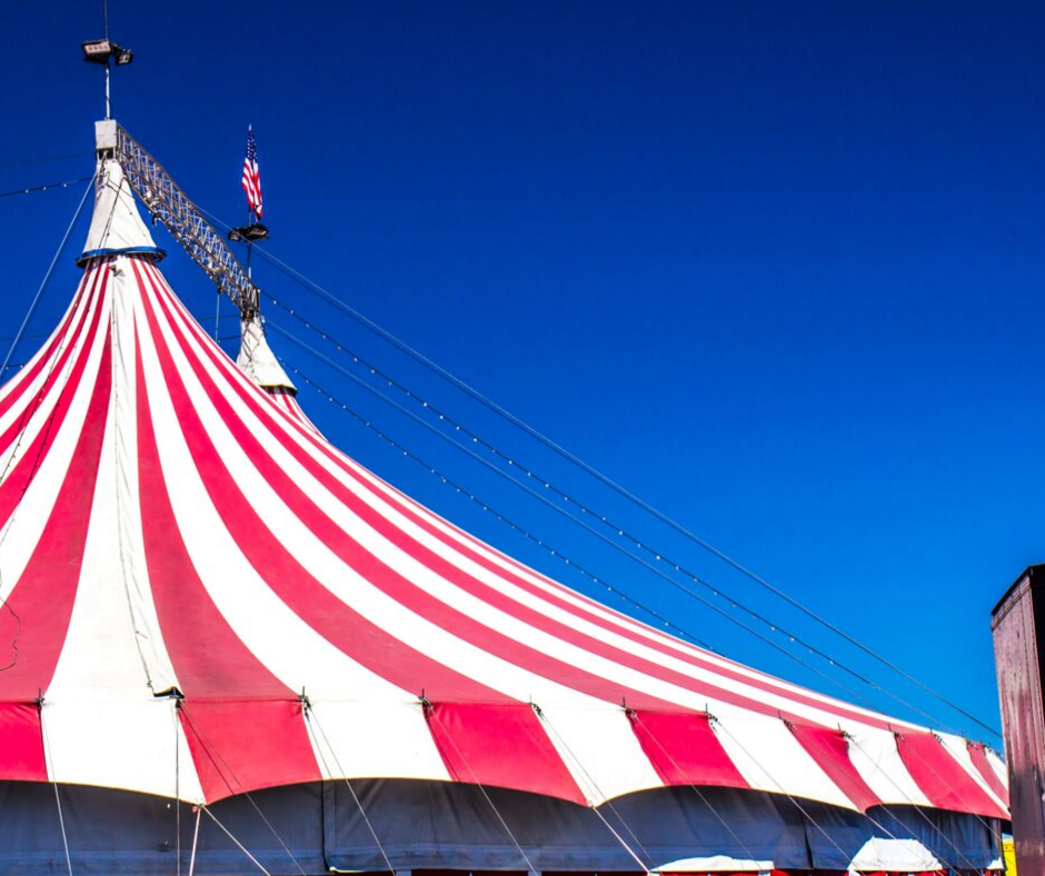 Wunderle's Big Top Adventure
