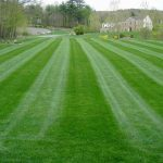 Lawn Care Company Grass Mowing
