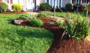 Landscaping mulch installation