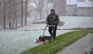Grass Mowing in winter