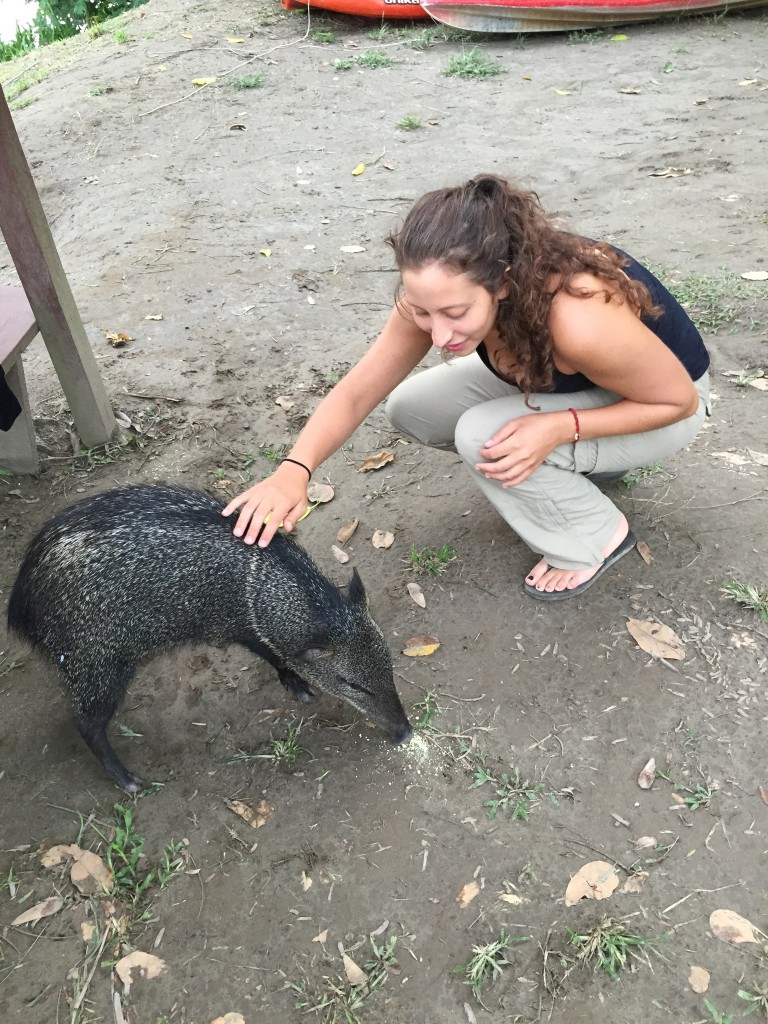 petting a pig named Lucy