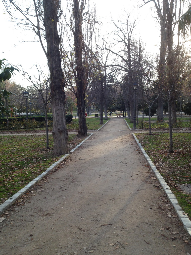 dirt path in el Parque del Buen Retiro, Madrid, Spain