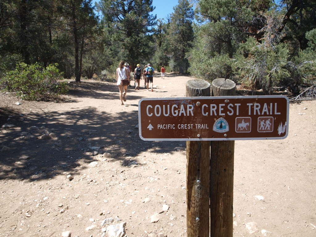 Start of Cougar Crest Trail, Big Bear Lake, California
