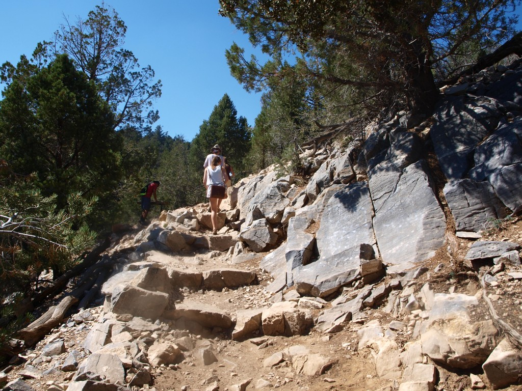 dry, stone steps on the trail of Cougar Crest, Big Bear Lake, California