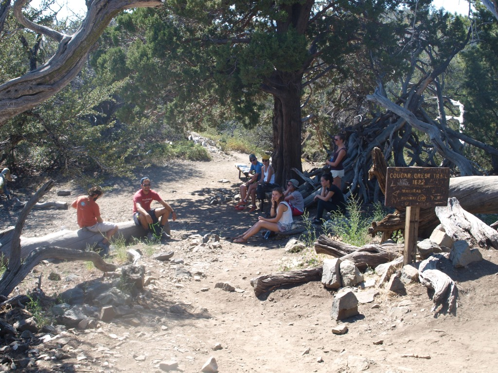 Crew of hikers resting at the top of Cougar Crest Trail in Big Bear Lake, California