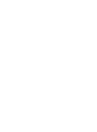 face int logo