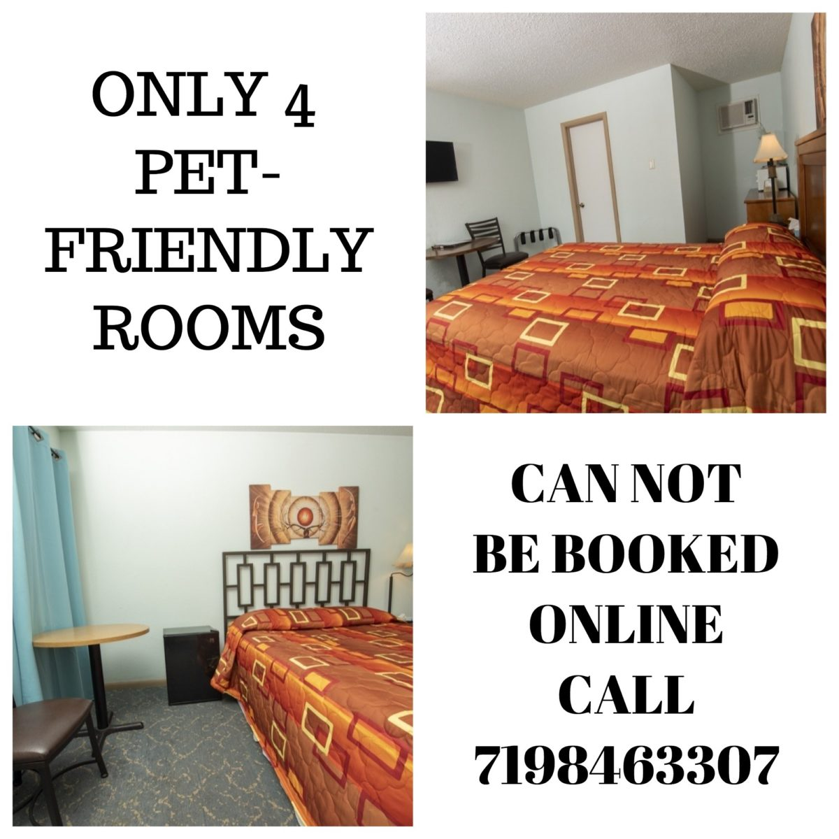 Pet Friendly Hotel Rooms in Trinidad Colorado