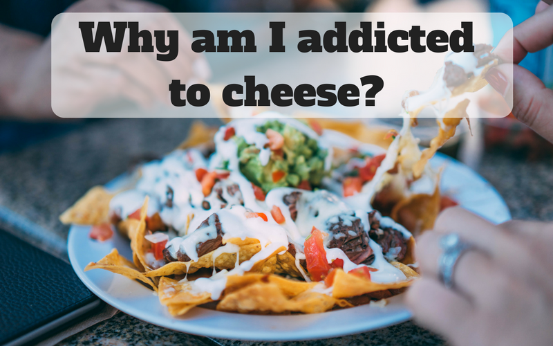 cheese addiction