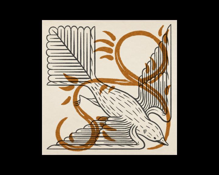 IllustrationPage_Site-01