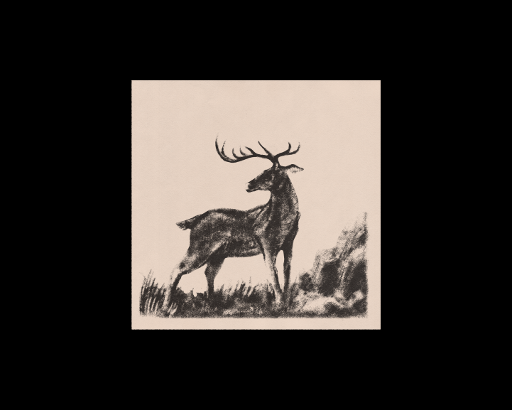 IllustrationPage_Site-16