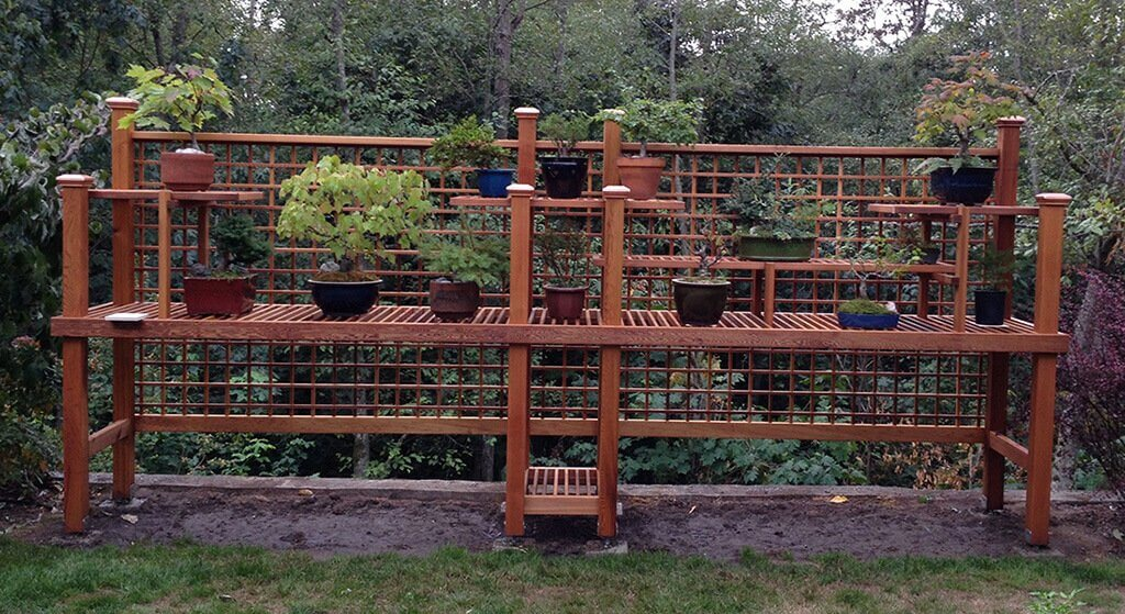 Beautiful Cedar Bonsai Bench image