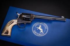 Gun-8193