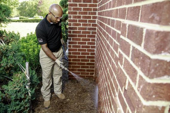 spraying for pests around a home