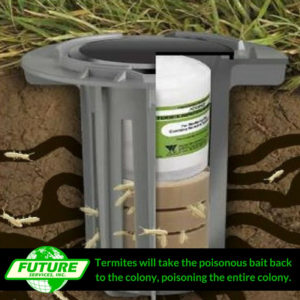 illustration of a termite baiting system working