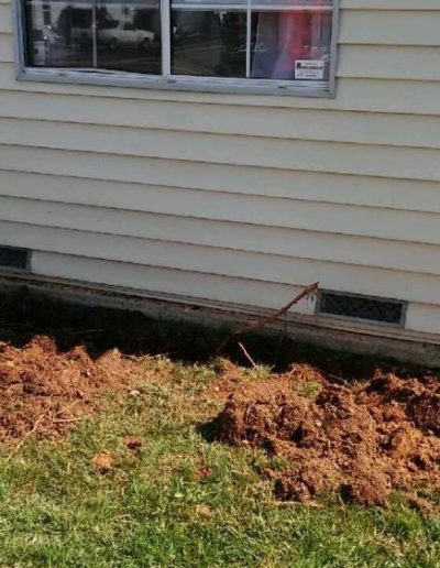 Trenching for termite treatment