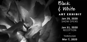 Black & White Show Web Cover