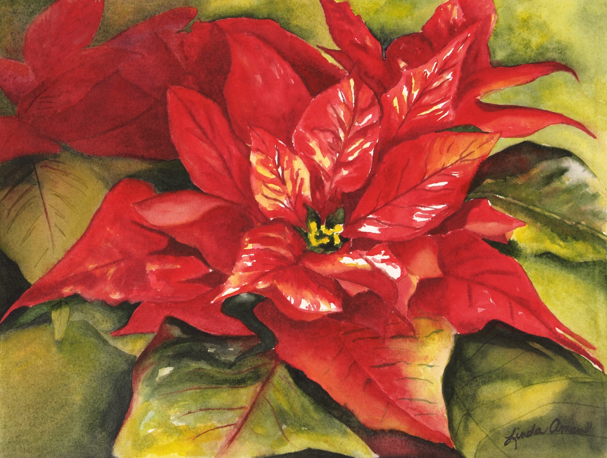 Painting a Christmas Poinsettia Watercolor Workshop