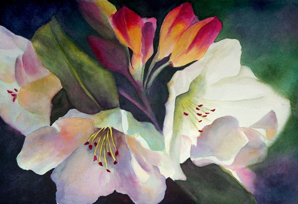 Blossomed – 22″ x 18″ Original Framed watercolor :: SOLD