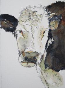 """Cow - 8"""" x 10"""" Original Watercolor :: SOLD"""