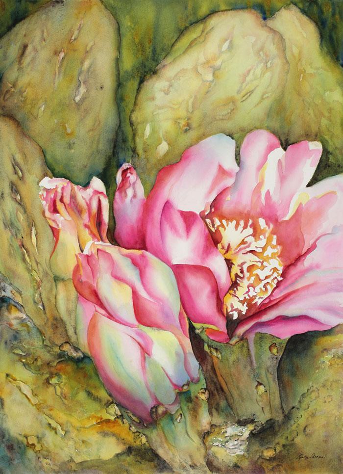 Desert Cactus Blossom – 35″ x 41″ Original Framed watercolor :: $1,200