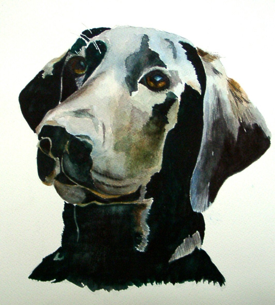 Molly -- Original Watercolor -- NFS