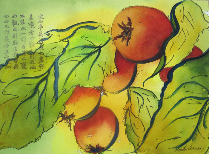 """Patterned Persimmons - 16"""" x 20"""" Original Matted Ready to Frame Watercolor :: $200"""