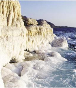EPN Dead Sea