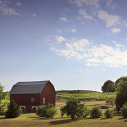 Homesteading – Advantages of Self-Sufficiency on Your Own Property
